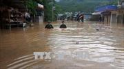 Lũ trên sông ở Nghệ An tiếp tục xuống, vùng núi Bắc Trung bộ đề phòng sạt lở đất