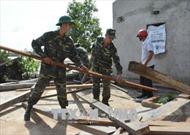 Đắk Lắk khẩn trương khắc phục hậu quả lốc xoáy