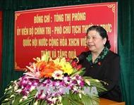 Phó Chủ tịch Quốc hội Tòng Thị Phóng thăm, tặng quà người có công tại Nghệ An