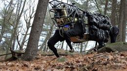 'Mèo rừng' - robot sát thủ mới của quân đội Mỹ
