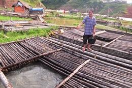 Nâng cao đời sống người dân vùng hồ sông Đà