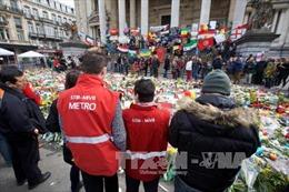 Bỉ cáo buộc thêm 3 nghi can tham gia khủng bố