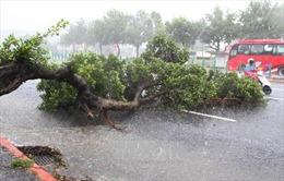 Đêm nay Hà Nội xuất hiện mưa dông