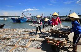 Sẽ ban hành thêm chính sách hỗ trợ ngư dân