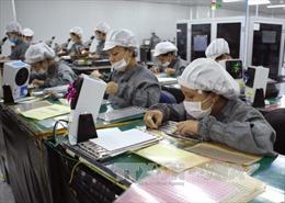 Tham tán thương mại phát huy vai trò cầu nối xuất khẩu