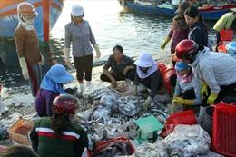 Giải quyết dứt điểm bồi thường cho ngư dân miền Trung
