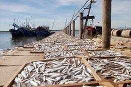 Giải ngân hỗ trợ ngư dân miền Trung trong tháng 10
