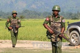 Giao tranh dữ dội tại thị trấn biên giới Myanmar