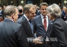 Hội nghị thượng đỉnh EU khép lại một năm đầy khó khăn