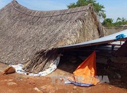 Bình Phước mưa gió lốc xoáy gây thiệt hại hơn 10 tỷ đồng