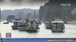 'Tour 0 đồng' lôi kéo khách Trung Quốc làm xấu xí, méo mó ngành du lịch