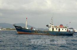 Đưa 12 ngư dân tàu cá gặp nạn về bờ an toàn
