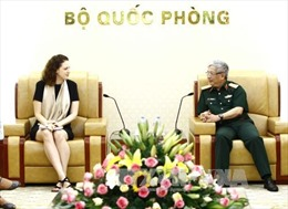 Việt Nam tăng cường phối hợp tham gia hoạt động gìn giữ hòa bình Liên hợp quốc
