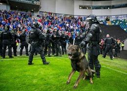 UEFA phạt Linfield và Celtic do hành động bạo lực tại Champions League