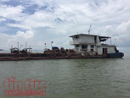 Nhức nhối nạn khai thác cát trái phép tại TP Hồ Chí Minh