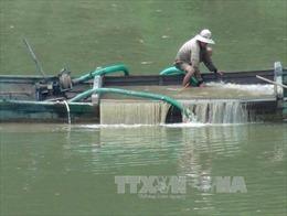 Xử lý dứt điểm hoạt động khai thác cát trái phép trên sông Cái, Khánh Hòa
