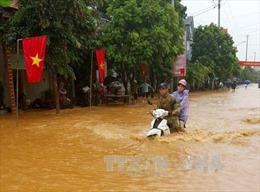 Tuyên Quang: Hơn 100 nhà bị ngập và hàng trăm ha lúa, hoa màu bị vùi lấp