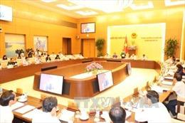 Đề xuất không thành lập HĐND, UBND ở đơn vị hành chính-kinh tế đặc biệt