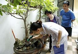 Hà Nội giảm 1.230 ca sốt xuất huyết so với tuần cao điểm