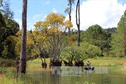 Thanh tra tỉnh Lâm Đồng kết luận có nhiều sai phạm tại Khu Du lịch hồ Tuyền Lâm - Đà Lạt