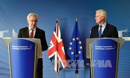 Đàm phán Brexit có tiến bộ nhưng chưa đủ để chuyển giai đoạn hai