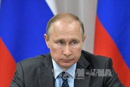 Tổng thống Nga lên án Triều Tiên vi phạm nghị quyết Hội đồng Bảo an