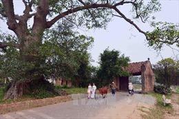Hà Nội huy động cộng đồng dân cư làm du lịch