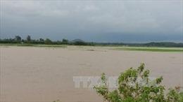 Mưa lớn gây ngập lụt nghiêm trọng tại Bà Rịa - Vũng Tàu