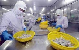 FTA giữa Việt Nam và EAEU đưa kim ngạch thương mại hai chiều tăng nhanh