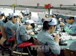 Công nhân Triều Tiên trở lại làm việc tại Khu Công nghiệp chung Kaesong