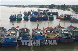 Ứng phó bão số 11: Thừa Thiên - Huế cấm tàu thuyền đánh bắt cá trên biển từ ngày 15/10