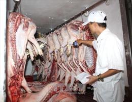Cần vá lỗ hổng khâu trung gian về truy xuất nguồn gốc thịt lợn