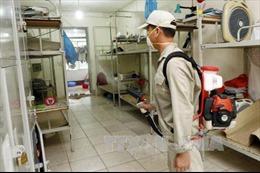 Chủ động diệt bọ gậy, giảm nguy cơ tái diễn đỉnh dịch sốt xuất huyết