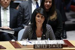 Mỹ hối thúc Hội đồng Bảo an thông qua chủ trương của Tổng thống Trump về Iran
