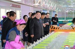 Nghi ngờ Triều Tiên đang sản xuất hàng loạt vũ khí sinh học