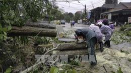 Ảnh hưởng của bão số 12: Các địa phương nỗ lực khắc phục thiệt hại do bão gây ra