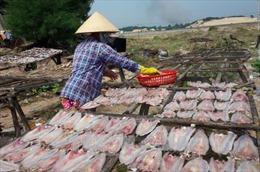 Bà Rịa-Vũng Tàu phát hiện chất cấm trong cá khô ở chợ đầu mối