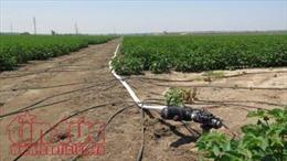 Học viên Việt Nam tham gia khóa học thạc sỹ nông nghiệp tại Israel