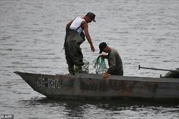 Nhật Bản nỗ lực tìm kiếm 12 ngư dân Triều Tiên mất tích
