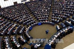 Nghị viện châu Âu thông qua các biện pháp hạn chế hàng nhập khẩu giá rẻ từ Trung Quốc