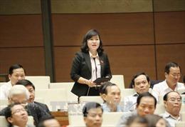 Đại biểu Quốc hội: Chiếm đoạt bảo hiểm xã hội phải được xét xử chứ không chỉ là khởi kiện