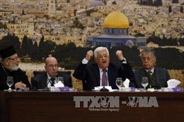 Palestine tiếp tục lên án việc Mỹ công nhận Jerusalem là thủ đô của Israel