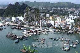 Một số biện pháp cấp bách để quản lý đất đai tại Quảng Ninh