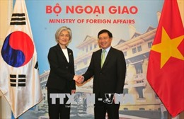 Việt Nam luôn coi trọng phát triển quan hệ với Hàn Quốc