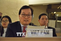 Việt Nam ủng hộ nỗ lực của cộng đồng quốc tế nhằm giải trừ vũ khí hạt nhân