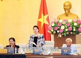 Triển khai kết luận của Ủy ban Thường vụ Quốc hội tại phiên họp thứ 24