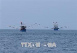 Tăng cường điều tra cơ bản tài nguyên, môi trường biển và hải đảo