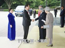 Khởi đầu giai đoạn phát triển hiệu quả hơn của quan hệ Việt Nam - Nhật Bản