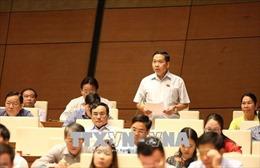 Bỏ quy hoạch tổng thể phát triển tổ chức hành nghề công chứng