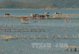 Phát triển ngành thủy sản Khánh Hòa - Bài cuối: Bảo tồn các nguồn tài nguyên thiên nhiên biển